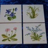 Diverse Wandfliesen, Maß: 10x10 cm. Stück je 15,- € Art.: 1394