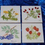 Diverse Wandfliesen, Maß: 10x10 cm. Stück je 15,- € Art.: 1395